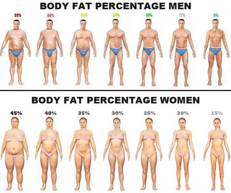 肥満度が低くても安心できない!?