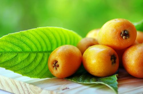 びわの葉は古来から漢方薬や民間療法として使われていた