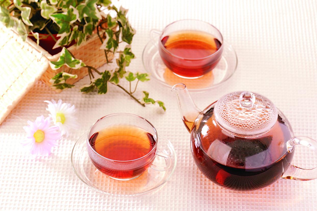 お茶ダイエットの効果は?痩せると言われる5つの効能と痩せた人の口コミ