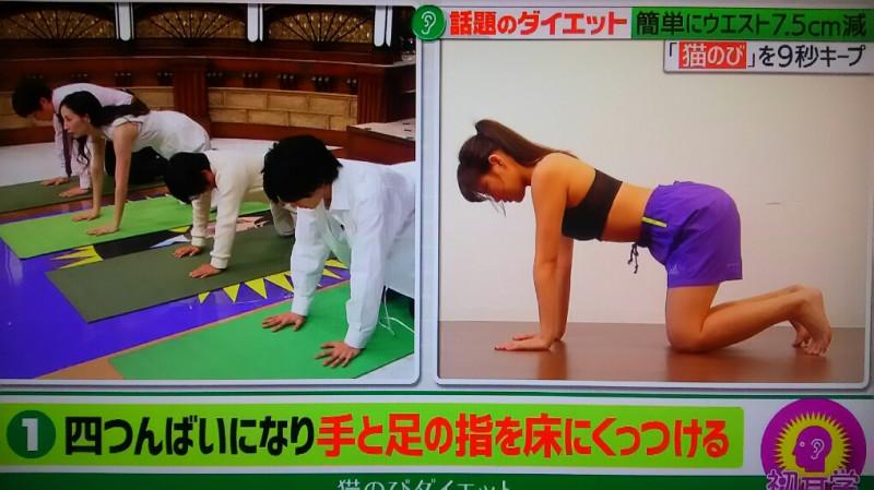 猫のびポーズ 膝の間に拳2つ分のスペースをつくり四つん這いになる