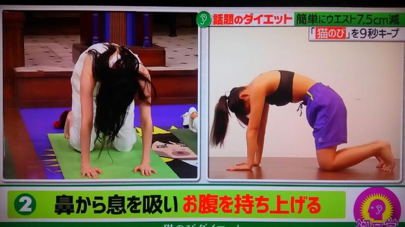 猫伸びポーズ お腹をへこませながら鼻から息を吸い、ゆっくり背中を持ち上げる