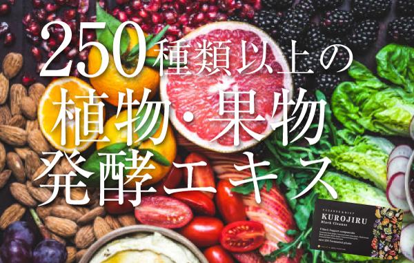 250種類以上の植物果物発酵エキス